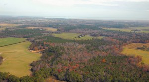 Aerial view of 90 acres farm near Nassawadox  VA