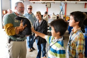 Kids petting a skunk at eastern Shore VA birding festival