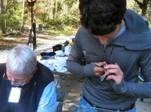 Banding songbirds at Kiptopeake State Park