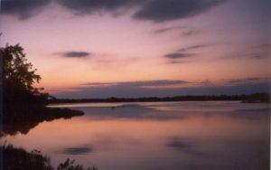 new sunset2