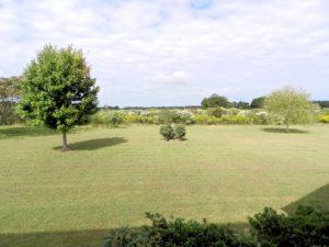 1backyard